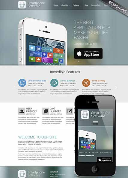 szablon strony internetowej www Application developer